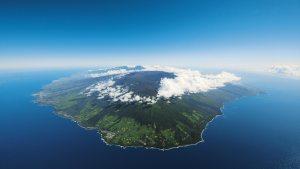 Umanima formation technique à la médiation animale s'envole pour l'ile de la Réunion