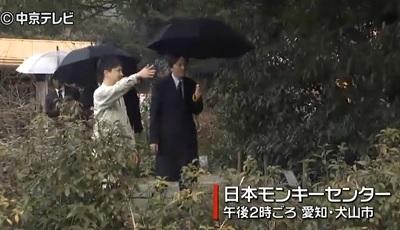 秋篠宮殿下モンキーセンター視察