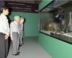 「大英自然史博物館展」を鑑賞される天皇、皇后両陛下(7日午後5時47分、東京・上野の国立科学博物館で)=山本高裕撮影 記事へ