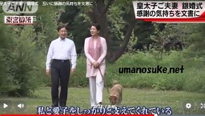 皇太子と雅子さま銀婚式・散歩映像