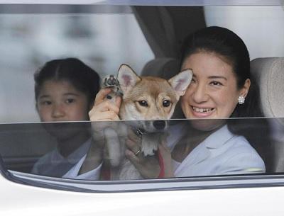 犬のお手振り雅子さま愛子さま