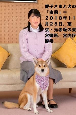 愛子さま17歳のお誕生日愛犬ゆりと