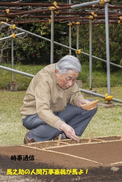 天皇陛下平成最後の種もみまき=皇居