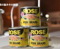 豚の脳みその缶詰