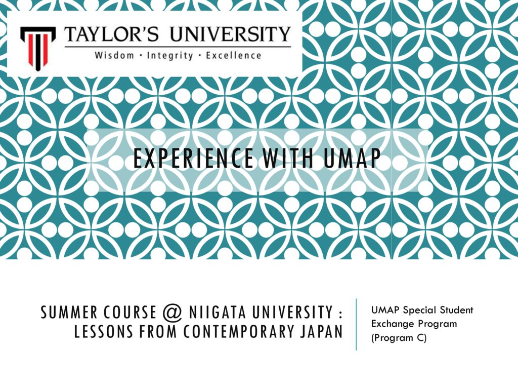 thumbnail of experience-with-umap