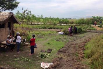 "Hacienda Luisita ""bungkalan."" Photos by Kathy Yamzon (BAYAN NCR)."