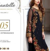 Chantelle Embroidered Chiffon Collection Vol-05 (D-05H)