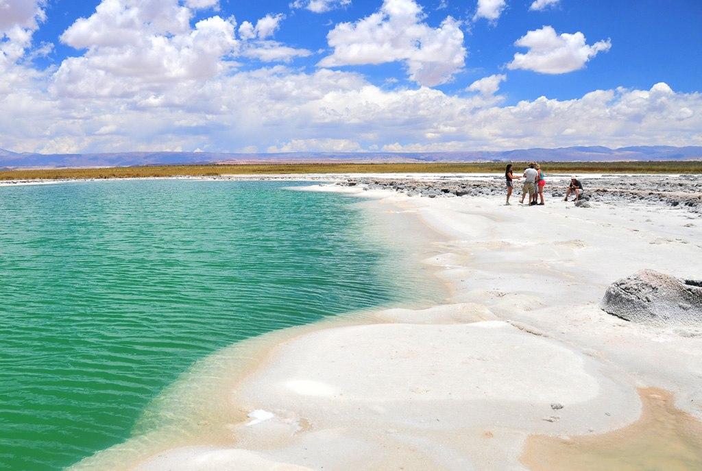 Laguna Cejar - O que fazer no Atacama