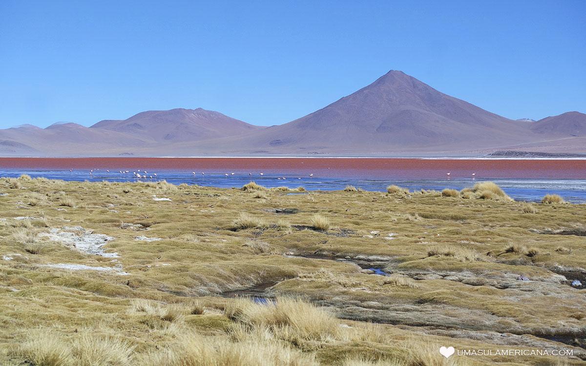 Laguna Colorada - Salar de Uyuni - Tudo o que você precisa saber sobre o passeio