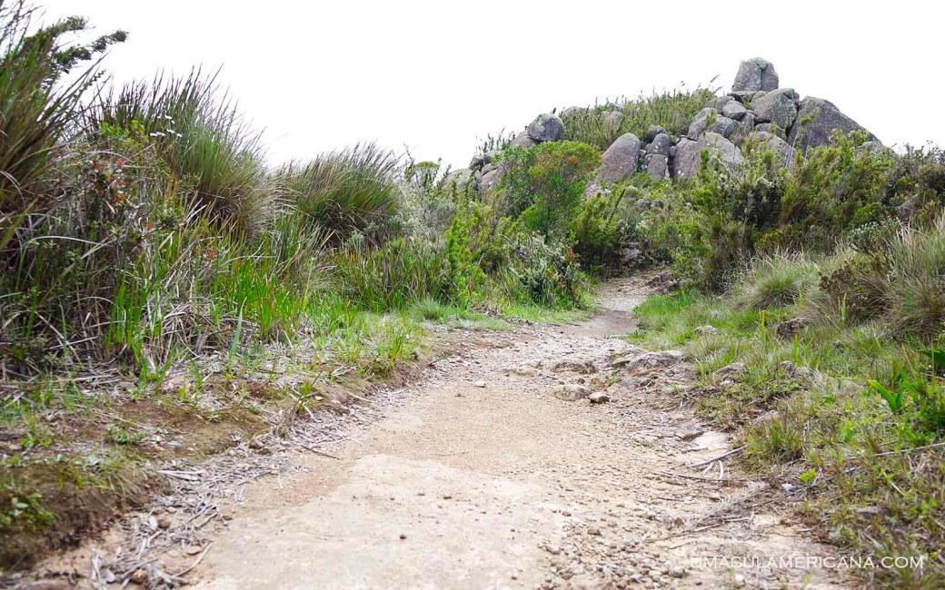 Trilha Morro do Couto - Final de semana no Parque Itatiaia - Trilhas na parte alta 2