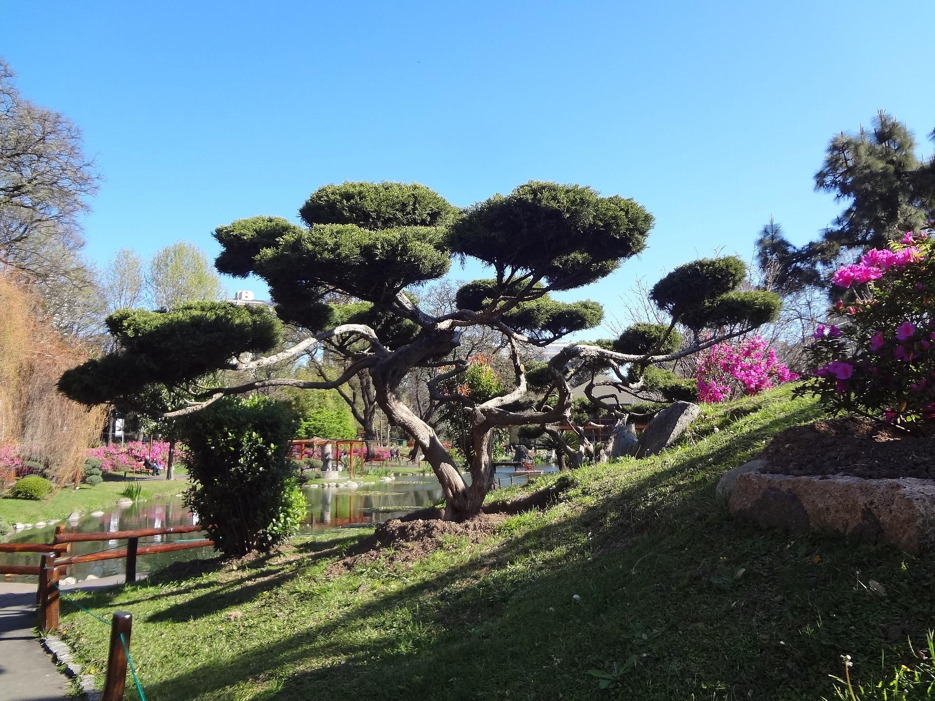 Jardim Japonês no bairro Palermo - Onde ficar em Buenos Aires - Bairros e hotéis