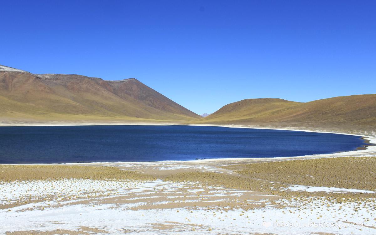 Laguna Miscanti, uma das Lagunas Altiplânicas chilenas