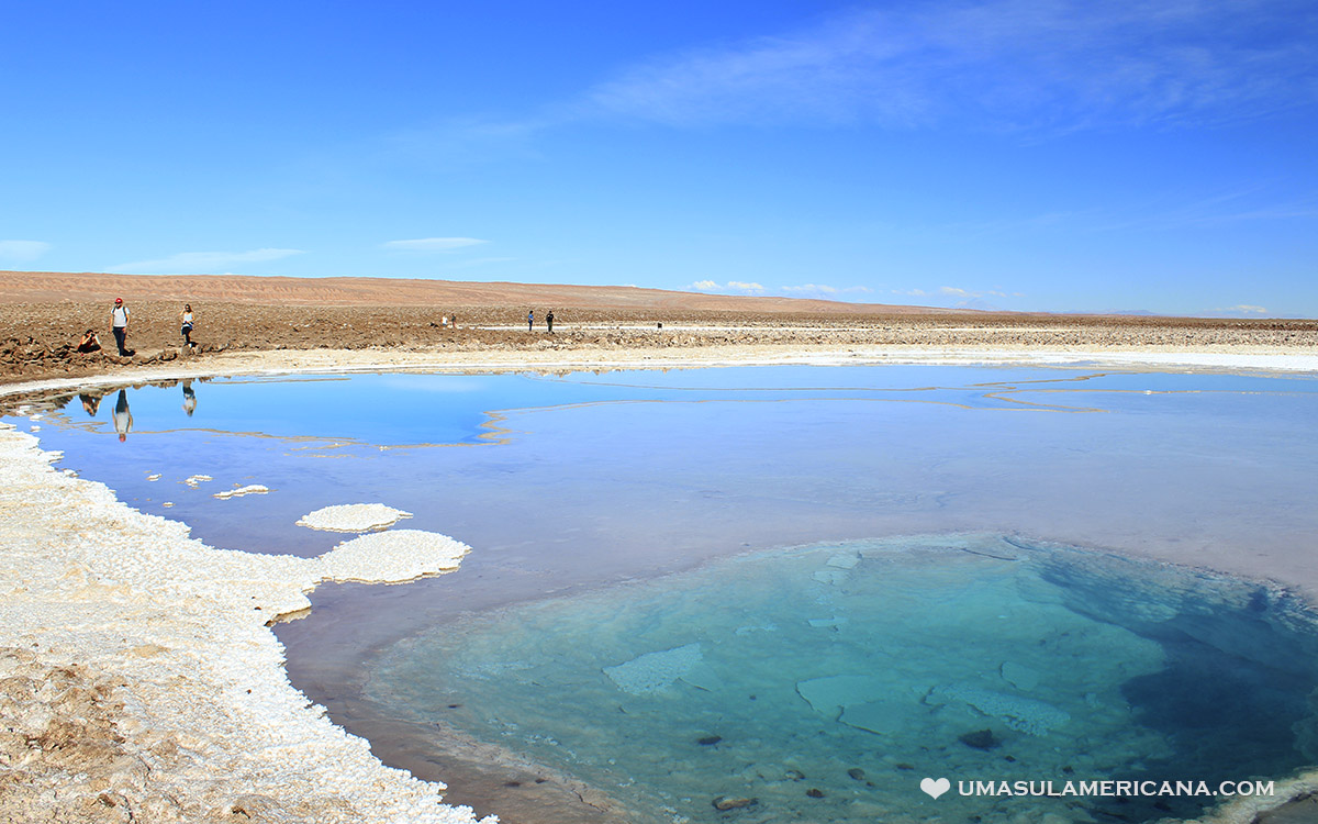 Lagunas de Baltinache, tour no Atacama com paisagens surreais