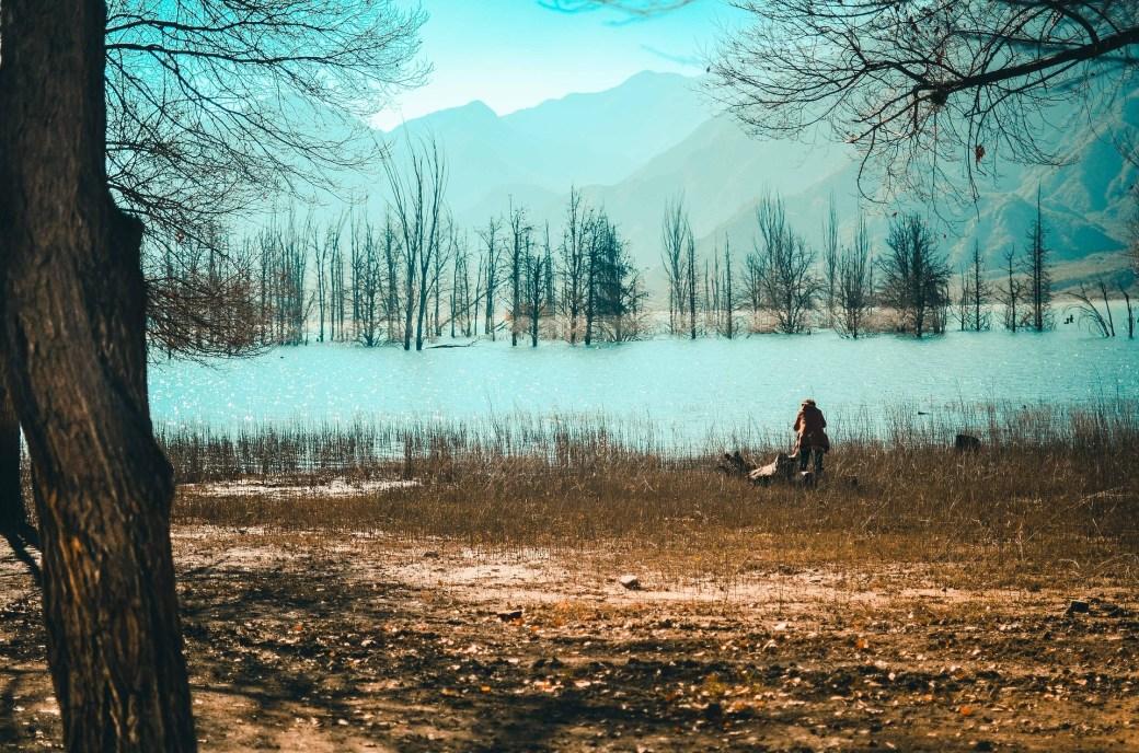 Potrerillos, um dos lugares perto de Mendoza que você precisa conhecer