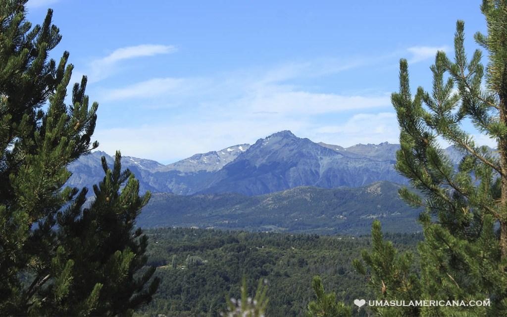 Bosque patagônico em El Bolsón