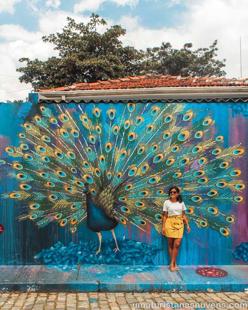 Grafite pavão no Beco do Batman - São Paulo