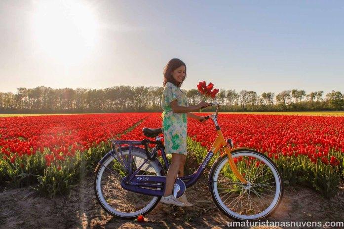 Au Pair nos Estados Unidos x Au Pair na Holanda