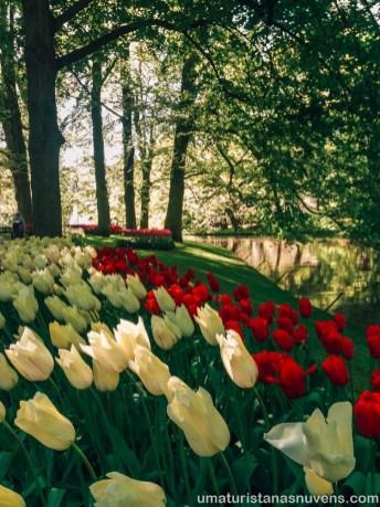 Como visitar o Keukenhof - parque de flores na Holanda19