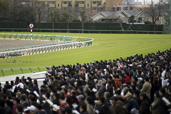 【競馬】みんなどの競馬場のレースが好き?