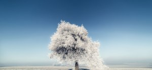 UmbertoFederico Photography