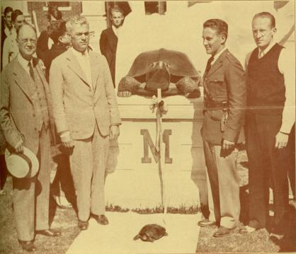 The original Testudo pulls the cloth off its likeness, Class Day, 1933.