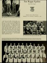 1951 Terrapin