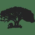 umdende-tree-lbg-400x400-0001