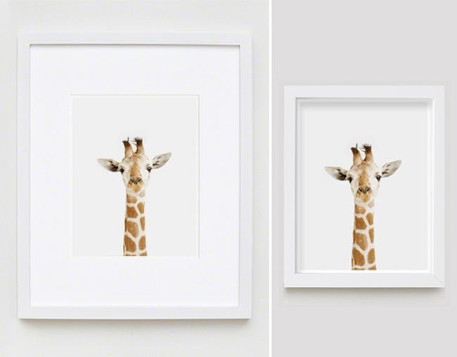 The Animal Print Shop www.theanimalprintshop.com