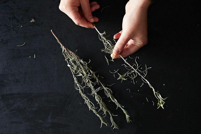 um-doce-dia-como-desidratar-ervas-em-casa-05