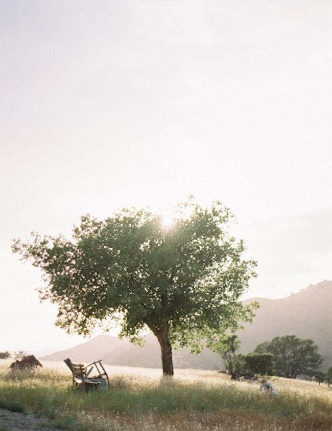 um-doce-dia-casamento-inspiracao-romance-relvado-06