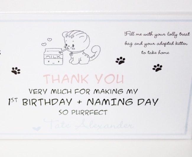 um-doce-dia-festa-inspiracao-bebe-gatinhos-de-leite-09