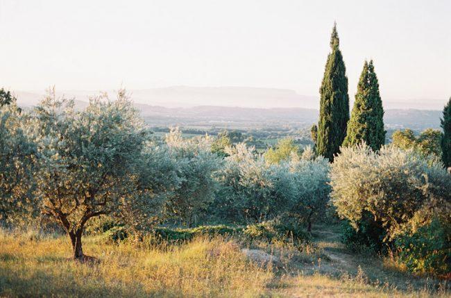 um-doce-dia-casamento-inspiracao-delicadeza-provencal-18