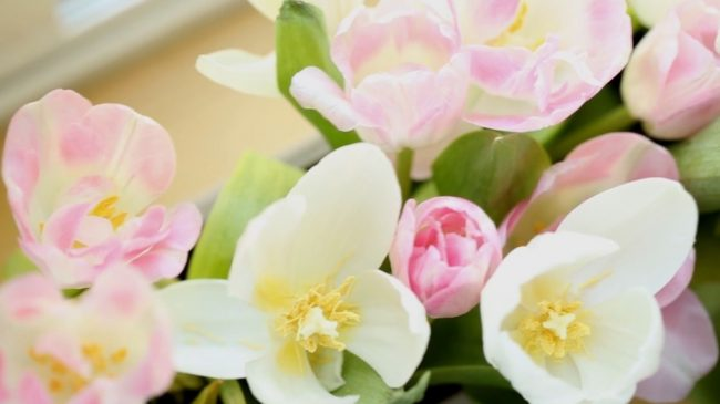 um-doce-dia-decoracao-botanico-para-o-primeiro-aniversario-16
