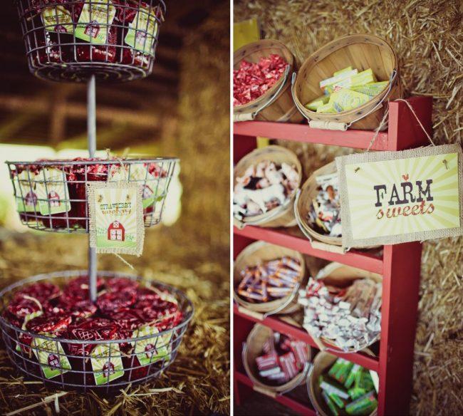 um-doce-dia-festa-de-aniversario-brincando-de-ser-fazendeiro-09