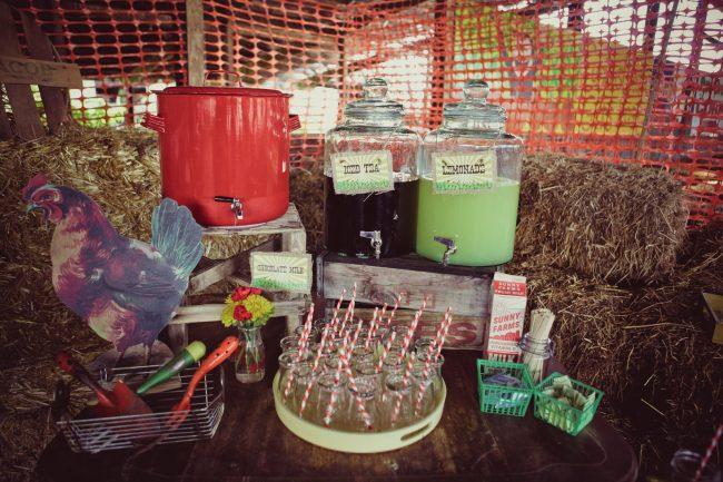 um-doce-dia-festa-de-aniversario-brincando-de-ser-fazendeiro-22