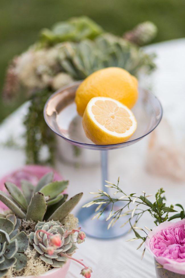 um-doce-dia-casamento-inspiracao-limoes-primavera-doce-23