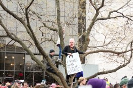 Women's March attendees climb trees to gain a better view of the rally. (Katrina Schmidt/Bloc Reporter)