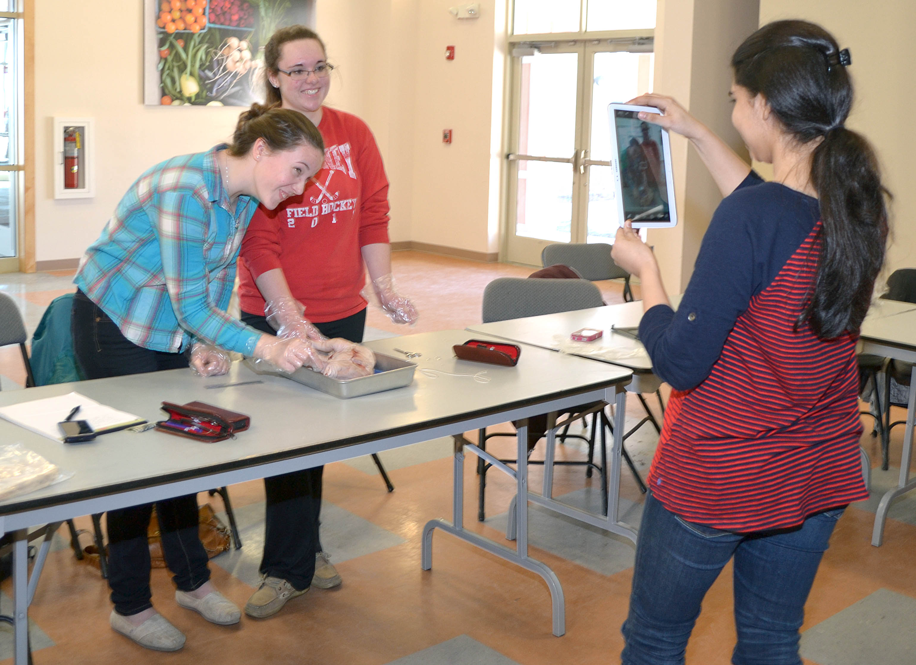 Ag Science Series Animal Dissection And Reproduction Umebaltimorecountyfourh