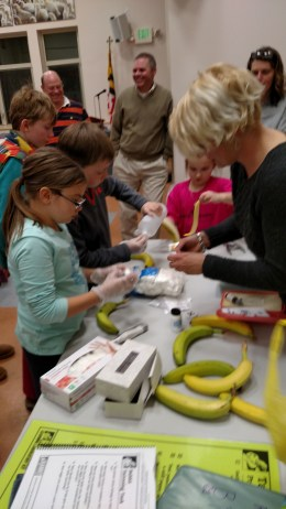 4-H'ers teaching the public about animal science