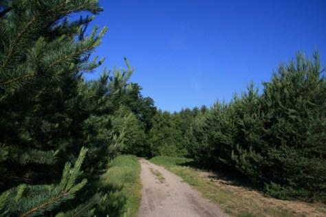 Nierderneuendorfer Weg