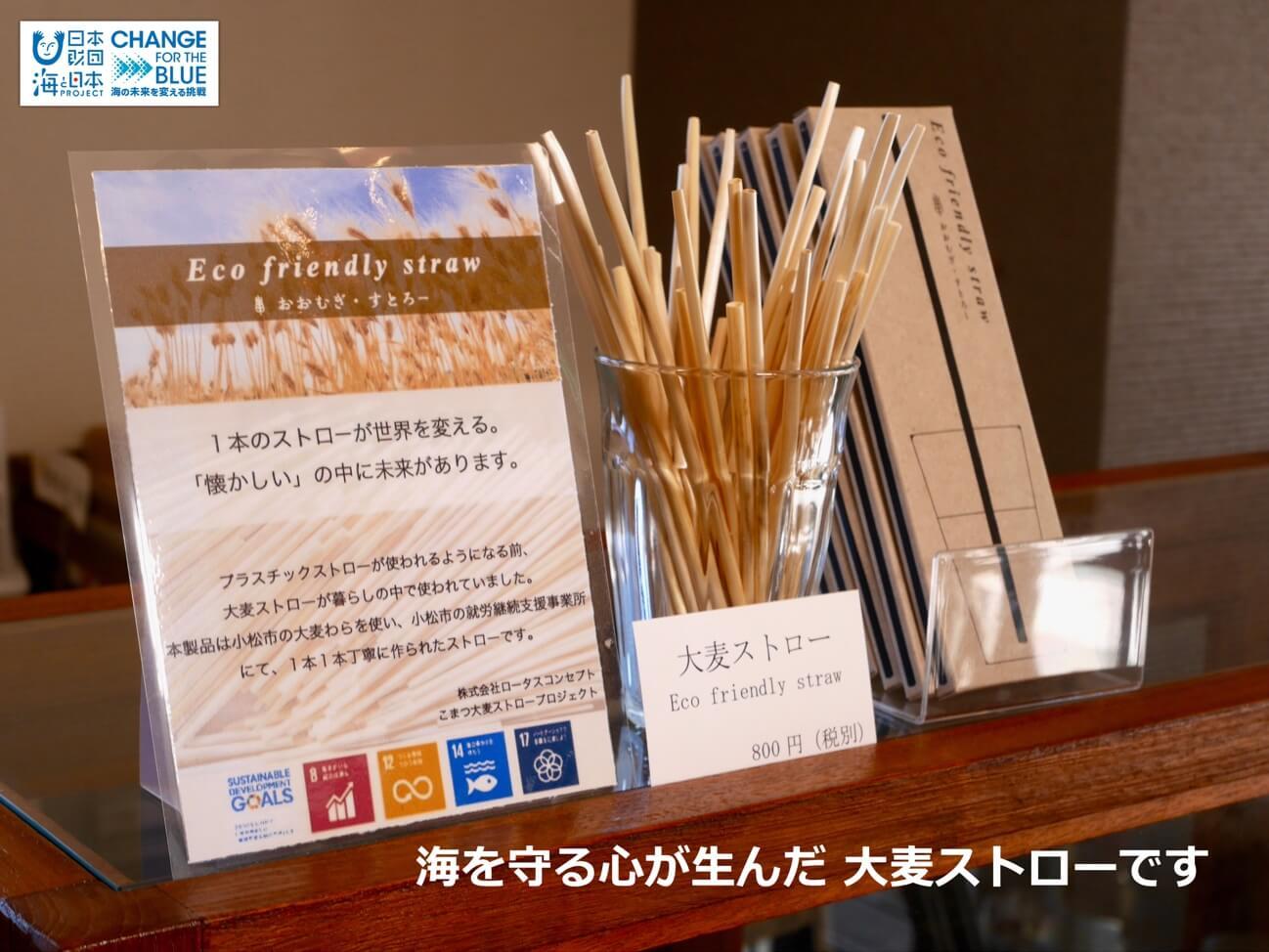 再生可能な紙や大麥のストローを通して環境問題を見つめ ...