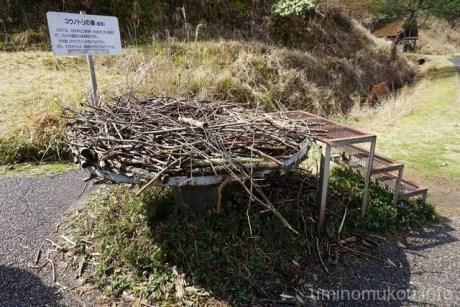 コウノトリの巣(模型)です