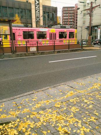 kagoshima009