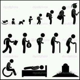 الإنسان بحاله وبمآله