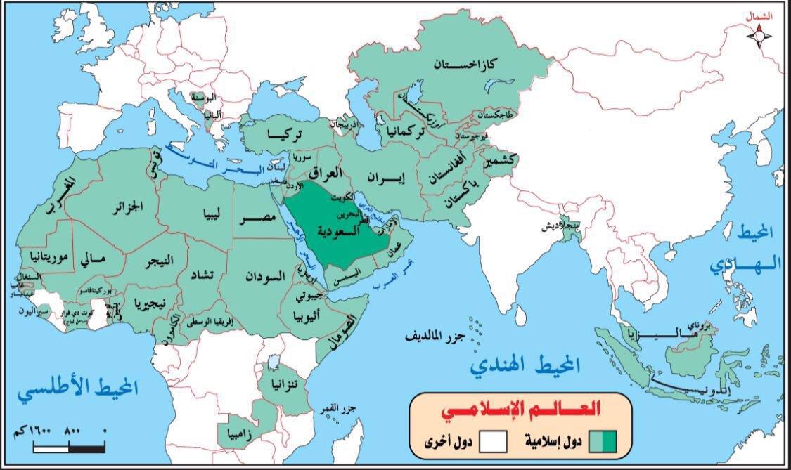 هل يبقى العالم الإسلامي إلى سنة 2030؟