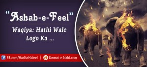 Ashab-e-Feel ka Waqia (Hathi walo ka Wakia)