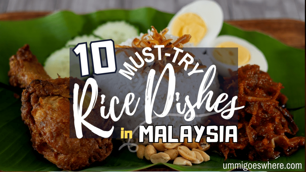 10 Types of Rice Dishes that You Must Try in Malaysia | Ummi Goes Where?