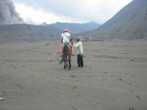 Horse on Mount Bromo