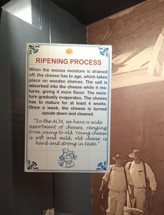 Cheese ripening process
