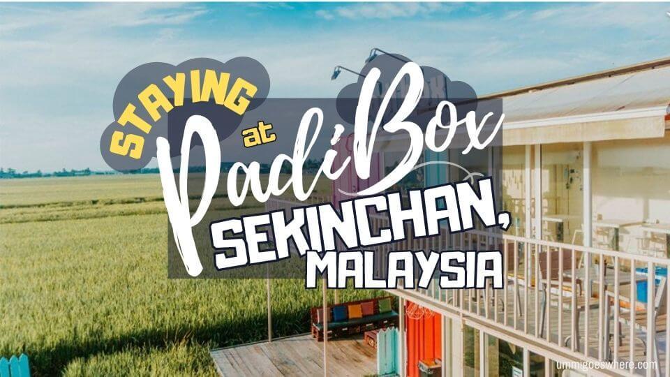 Padi Box Sekinchan